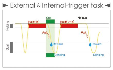 External & Internal-trigger task